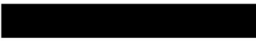 Bonvicini Logo